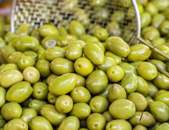 mazraeshomal20 705x541 - محصولات کشاورزی