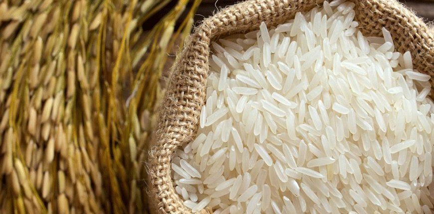 درجه یک مزرعه شمال 870x430 - برنج اعلا مزرعه شمال