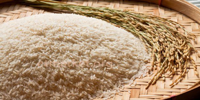 مزرعه شمال - برنج اعلا مزرعه شمال