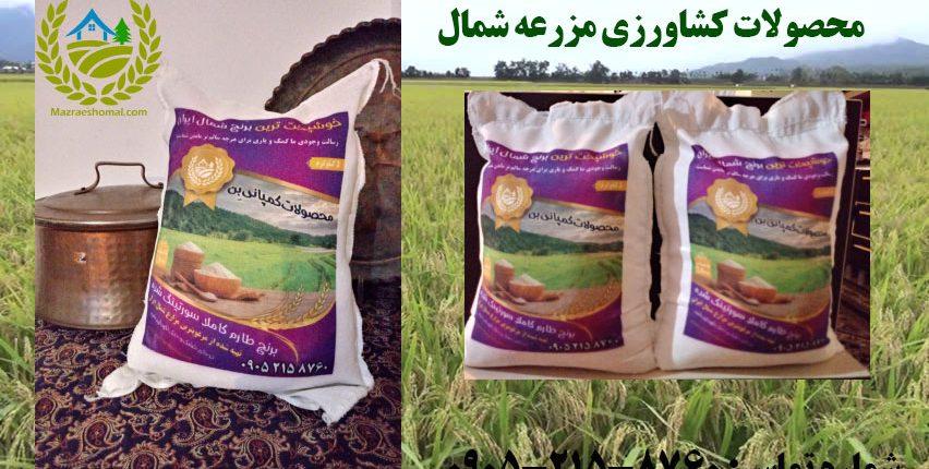 mazrae rise1 852x430 - برنج اعلا مزرعه شمال